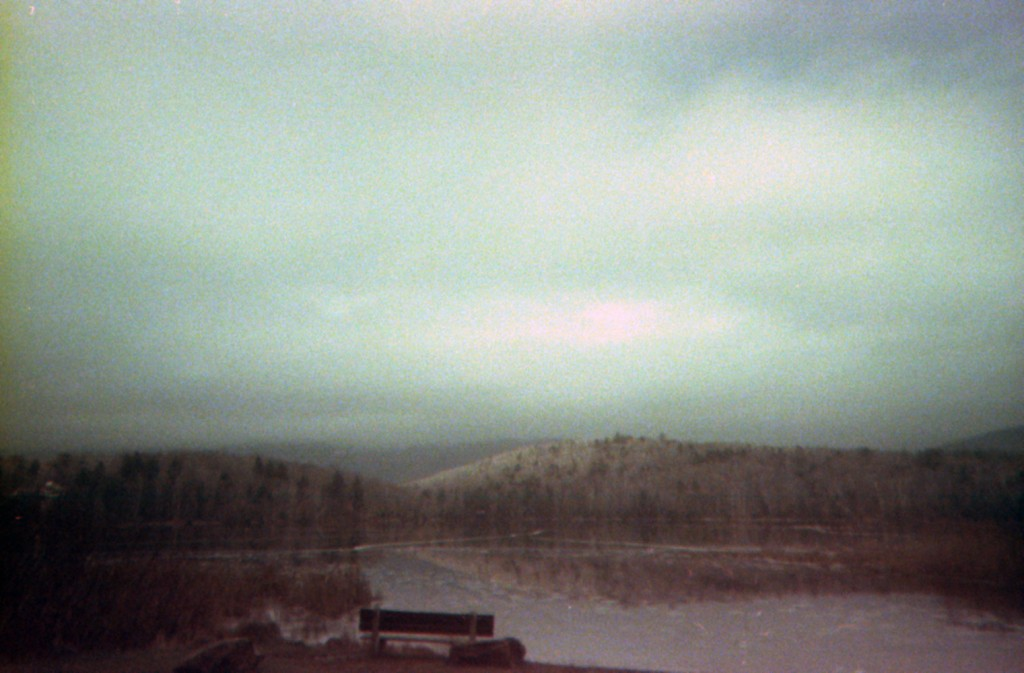 Wild Harmony - 35mm